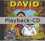 Playback-CD: David - ein echt cooler Held