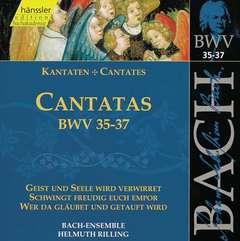 Cantatas Vol.12 (BWV 35/36/37)