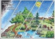 """Postkarte """"Am ersten Tag schuf Gott das Licht, ..."""""""